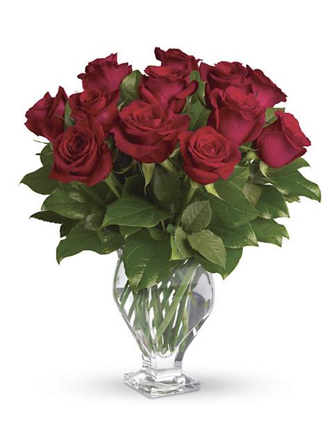 mazzo di 12 rose rosse