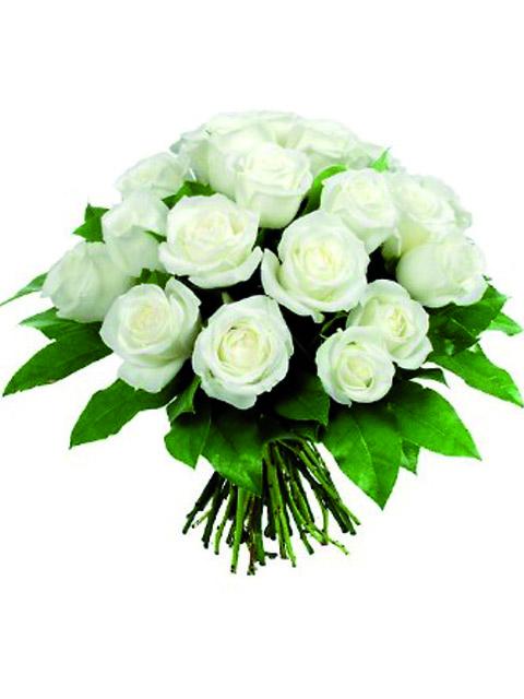 Bouquet di 18 roselline bianche a Roma