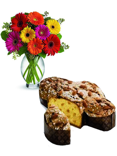 Bouquet di gerbere colorate e colomba a Roma