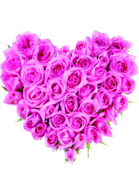 Cuore di rose rosa a Roma