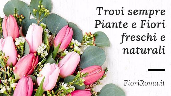 vendiamo fiori e piante online a roma