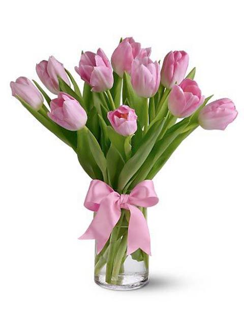 Bouquet di tulipani rosa a Roma